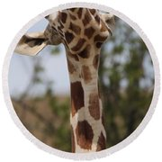 Giraffe Neck And Teeth Round Beach Towel by Dan Sproul