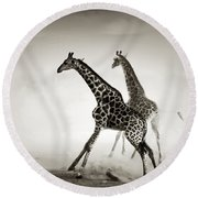 Giraffes Fleeing Round Beach Towel by Johan Swanepoel