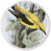 Golden Oriole Round Beach Towel by English School