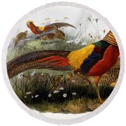 Golden Pheasants Round Beach Towel by Joseph Wolf