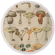 Good And Bad Mushrooms Round Beach Towel by French School