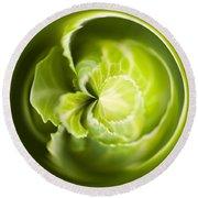 Green Cabbage Orb Round Beach Towel by Anne Gilbert