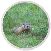 Groundhog Reconnaissance Round Beach Towel by Neal  Eslinger