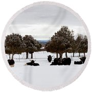 Herd Of Yaks Bos Grunniens On Snow Round Beach Towel by Panoramic Images