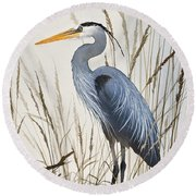 Herons Natural World Round Beach Towel by James Williamson