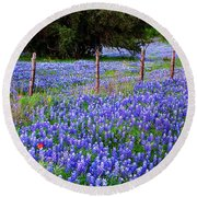 Hill Country Heaven - Texas Bluebonnets Wildflowers Landscape Fence Flowers Round Beach Towel by Jon Holiday