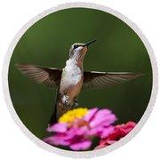 Hummingbird Round Beach Towel by Christina Rollo