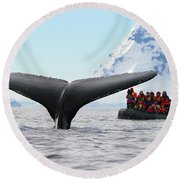 Humpback Whale Fluke  Round Beach Towel by Tony Beck