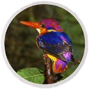 India Three Toed Kingfisher Round Beach Towel by Anonymous