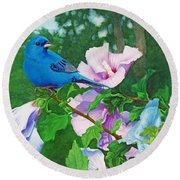 Indigo Bunting  Round Beach Towel by Ken Everett