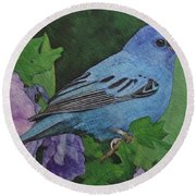 Indigo Bunting No 2 Round Beach Towel by Ken Everett