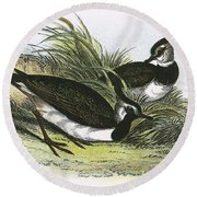Lapwing Round Beach Towel by English School