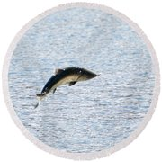 Leaping Chinook Round Beach Towel by Mike  Dawson