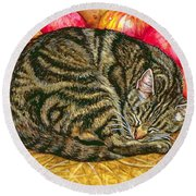 Left Hand Apple Cat Round Beach Towel by Ditz