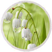Lily Of The Valley Round Beach Towel by Veronica Minozzi