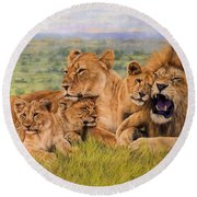 Lion Family Round Beach Towel by David Stribbling
