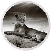 Lioness On Desert Dune Round Beach Towel by Johan Swanepoel