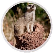 Lookout Post Round Beach Towel by Michelle Wrighton
