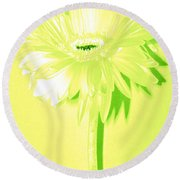 Melon Ball Zinnia Round Beach Towel by Sherry Allen
