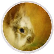 Memories Of Watership Down Round Beach Towel by Lois Bryan