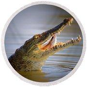 Nile Crocodile Swollowing Fish Round Beach Towel by Johan Swanepoel