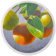 Oranges Round Beach Towel by Carey Chen
