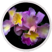Orchid Embrace Round Beach Towel by Jessica Jenney