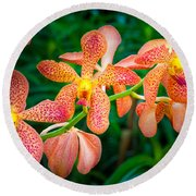 Orchids Round Beach Towel by Inge Johnsson