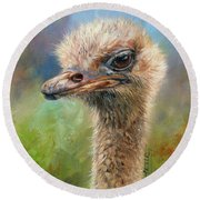 Ostrich Round Beach Towel by David Stribbling
