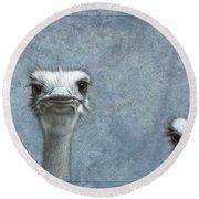 Ostriches Round Beach Towel by James W Johnson