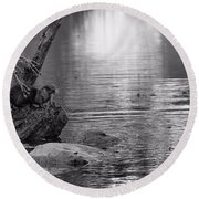 Otter's Catch In Black And White Round Beach Towel by Dan Sproul