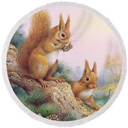 Pair Of Red Squirrels On A Scottish Pine Round Beach Towel by Carl Donner