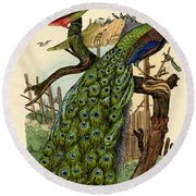 Peacock Round Beach Towel by French School