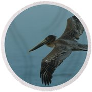 Pelican Round Beach Towel by Sebastian Musial
