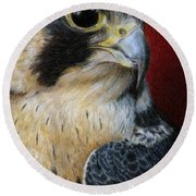 Peregrine Falcon Round Beach Towel by Pat Erickson