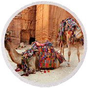 Petra Camels Round Beach Towel by Stephen Stookey