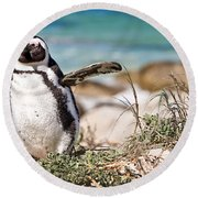 Happy Penguin Round Beach Towel by Delphimages Photo Creations