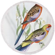Platycercus Adelaidae From The Birds Of Australia Round Beach Towel by John Gould