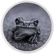 Pondering Frog Bw Round Beach Towel by Laura Fasulo