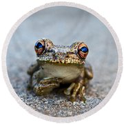 Pondering Frog Round Beach Towel by Laura Fasulo
