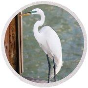Pretty Great Egret Round Beach Towel by Carol Groenen