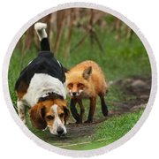 Probably The World's Worst Hunting Dog Round Beach Towel by Mircea Costina Photography