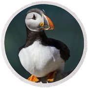 Puffin On The Edge Of The Rock Round Beach Towel by Heiko Koehrer-Wagner