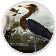 Purple Heron Round Beach Towel by John James Audubon