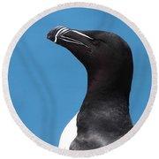 Razorbill Profile Round Beach Towel by Bruce J Robinson