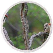 Red-billed Hornbills Round Beach Towel by Bruce J Robinson