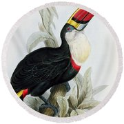 Red-billed Toucan Round Beach Towel by Edward Lear