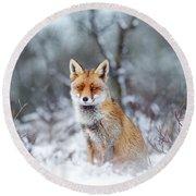 Red Fox Blue World Round Beach Towel by Roeselien Raimond