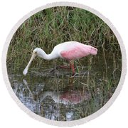 Roseate Spoonbill Reflection Round Beach Towel by Carol Groenen