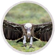 Ruppells Griffon Vulture Gyps Round Beach Towel by Panoramic Images